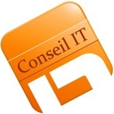 logo_conseil_it_small4